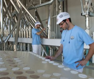Casa Tarradellas, centre de producció de farina